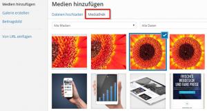 Wordpress-Mediathek