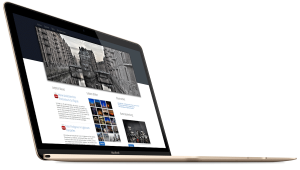 Webdesign Referenzen Netalb